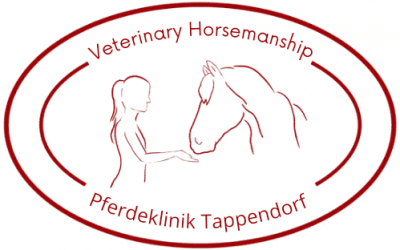 Veterinary Horsemanship