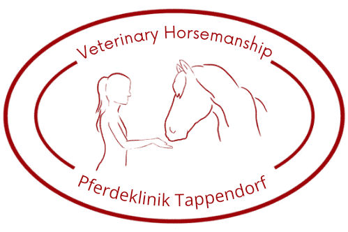 Veterinary Horsemanship