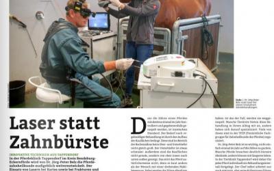 Pferd+Sport Artikel Februar 2021
